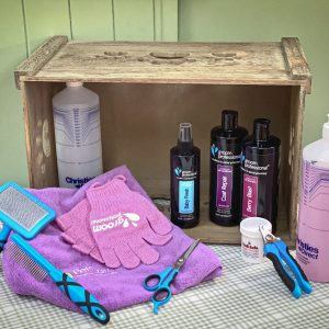 Spa Day Pamper Dog Hamper