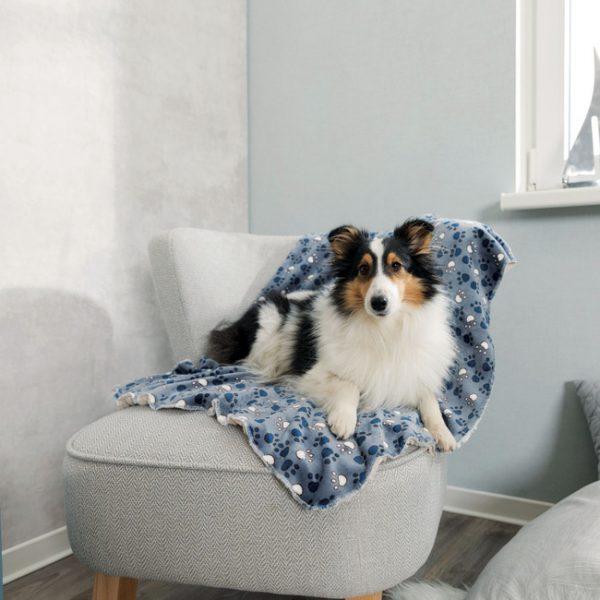 Trixie Tammy Blanket Lifestyle